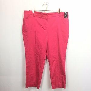New York & Company 16 Pants Pink Straight Crop Sat